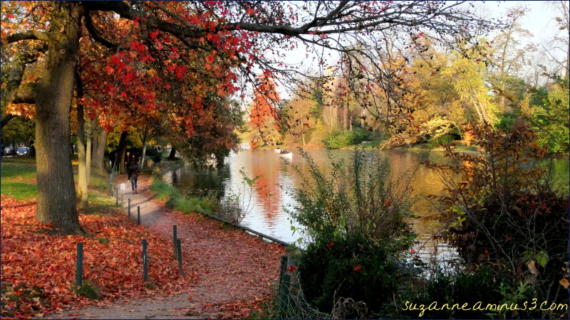 image, lake, trees, autumn,paris