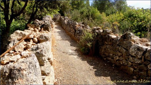 image,  origiinal, road,  Bethlehem, Jerusalem