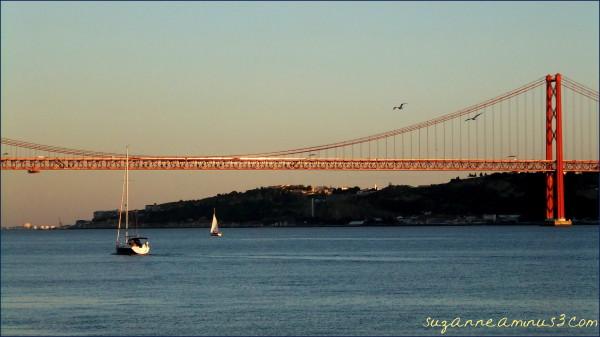 lisbon, harbour, yacht, bridge, birds