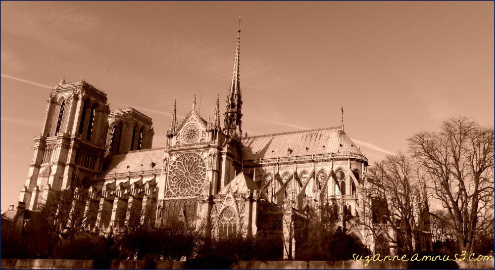 image, notre dame, cathedral, sepia, paris