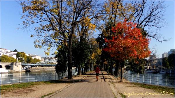 image, boulevade, paris, person seine, trees