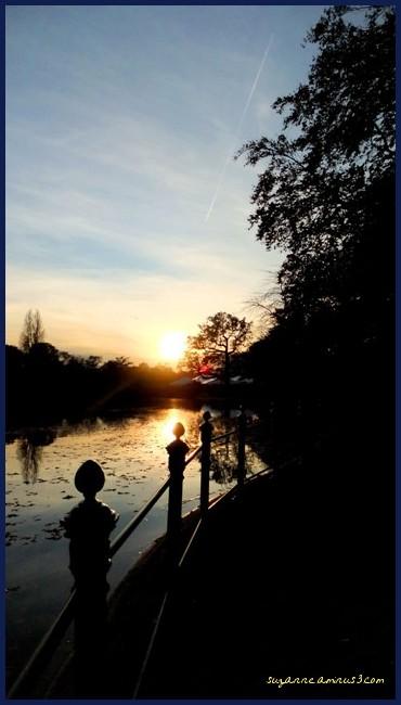 image, sunset, silhouette, lake, bois de boulogne