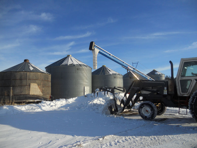 Loading the lentils 2/8