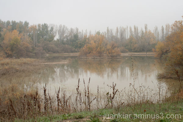 reflection on water in a misty day