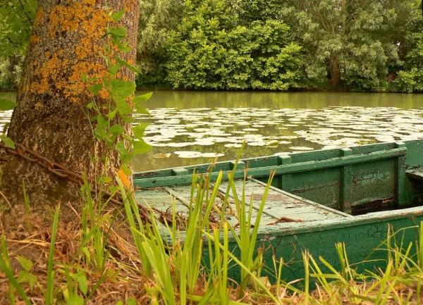 Barque solitaire...