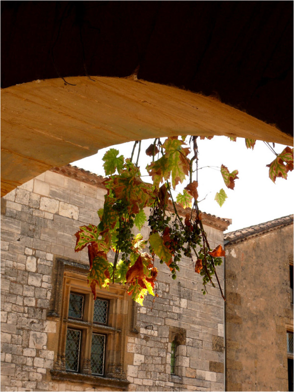 couleurs d'automne en Périgord...