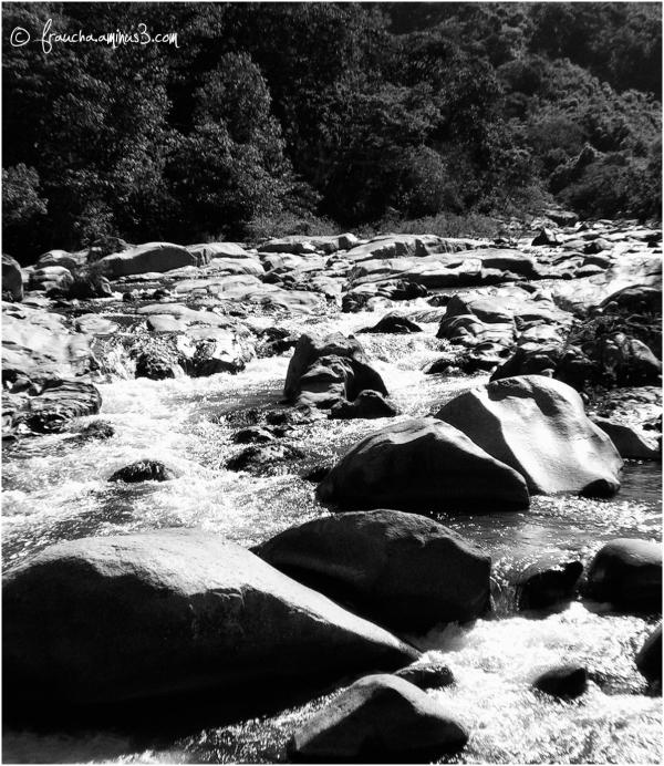 Slippery Rocks