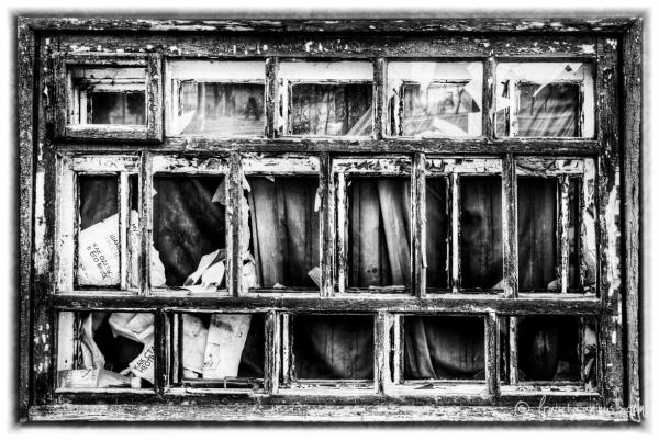 Window IN B&W