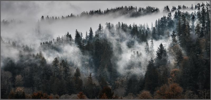 Old Oregon Hills