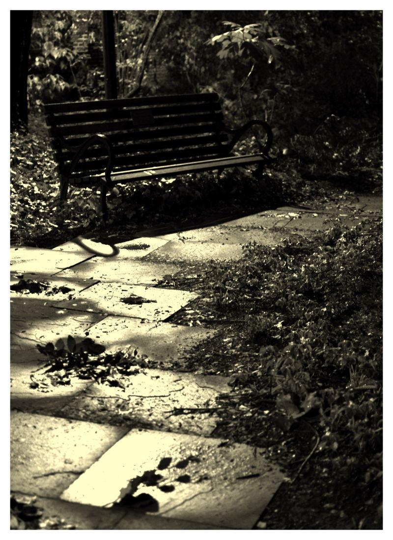 bench at Penn