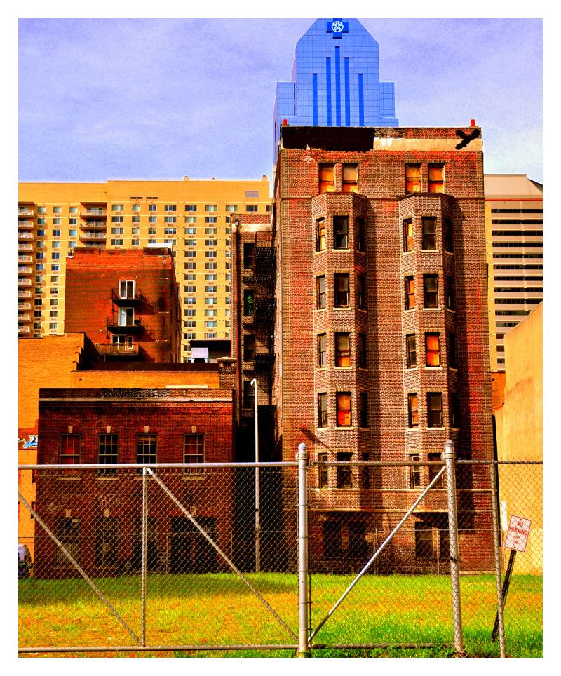 yard, philadelphia, september 2010