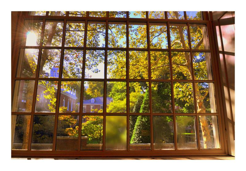 window, old city, philadelphia, fall 2010
