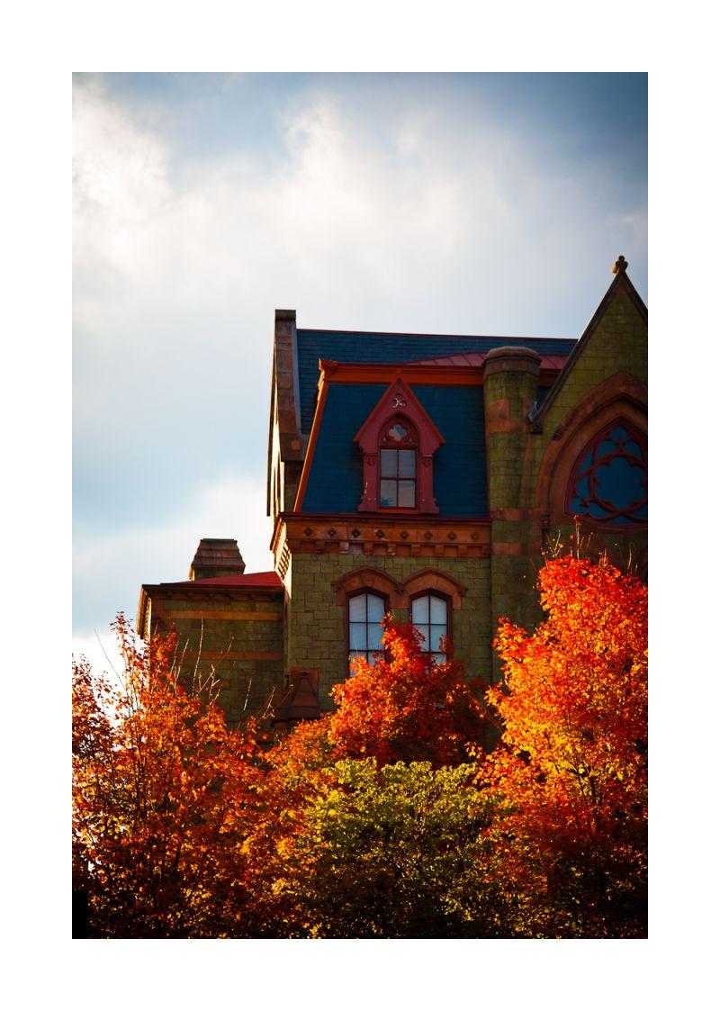 penn campus, philadelphia fall 2010