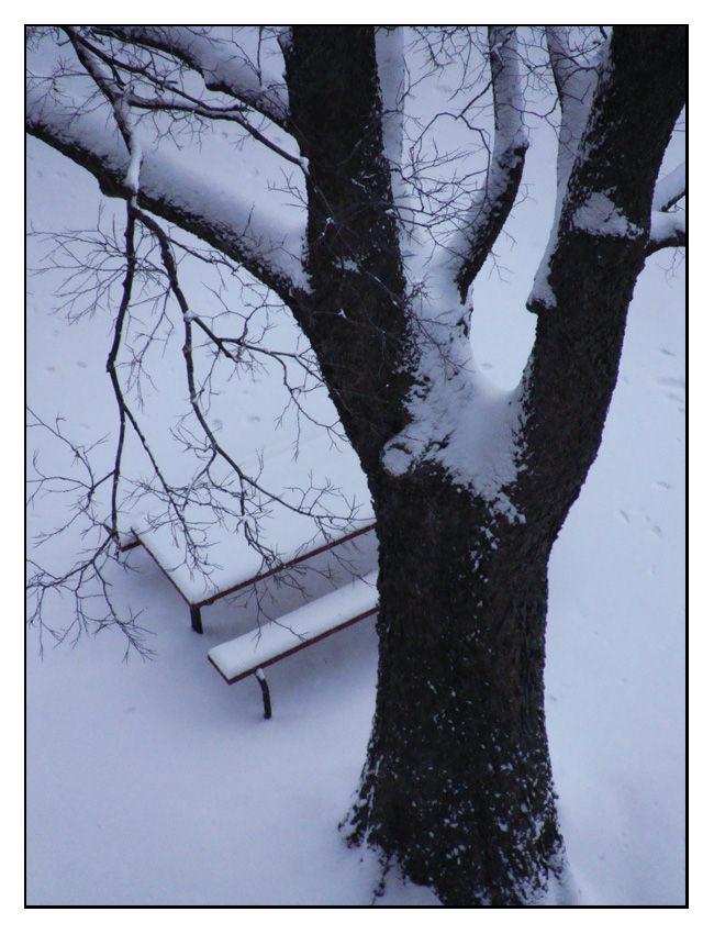 Remembering winter in Purdue - 5