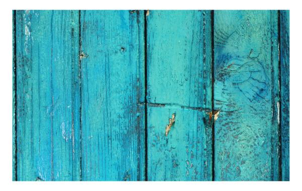 The ageing door