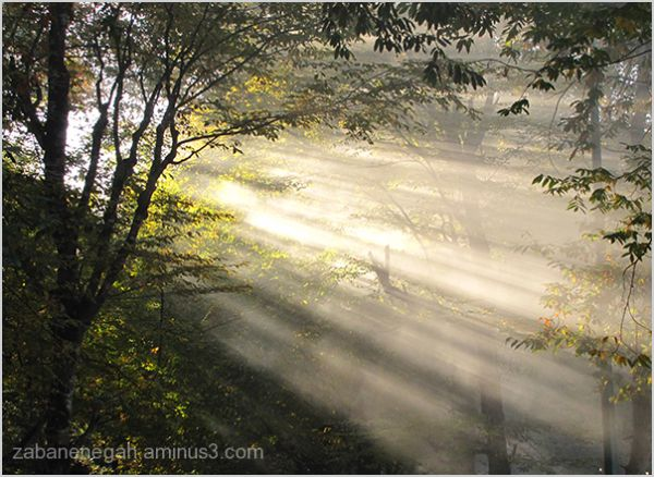 عباسآباد بهشهر 27 آبان 89 پائیز نور