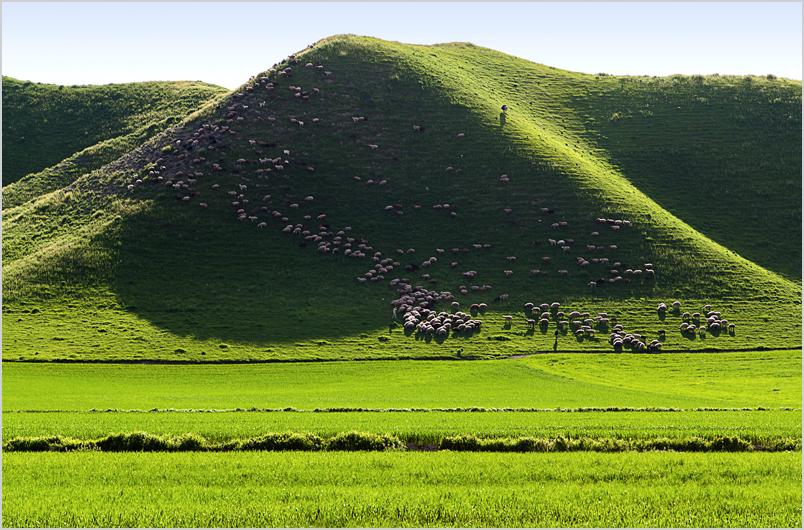 Goosfandestan