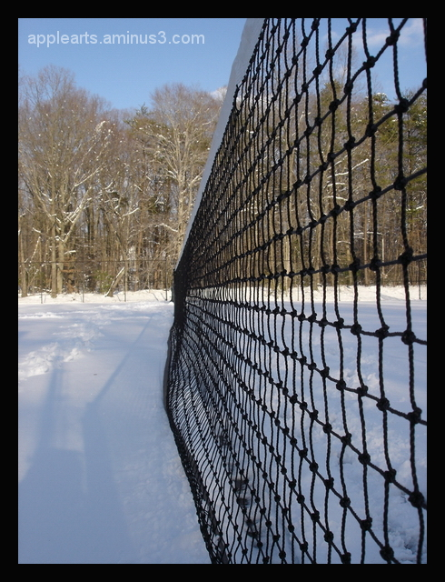 Snowy Courts