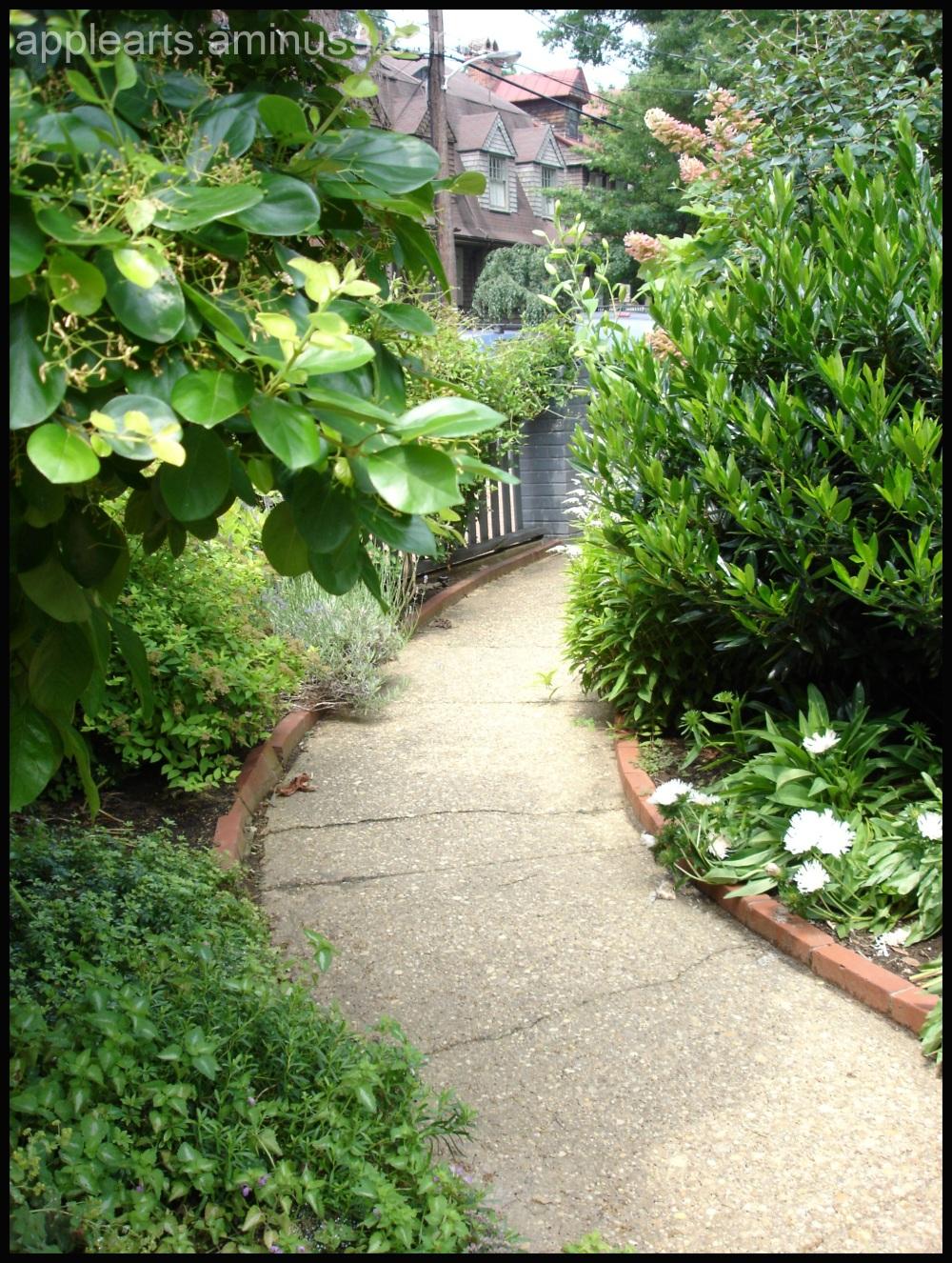 Flower Graden Path