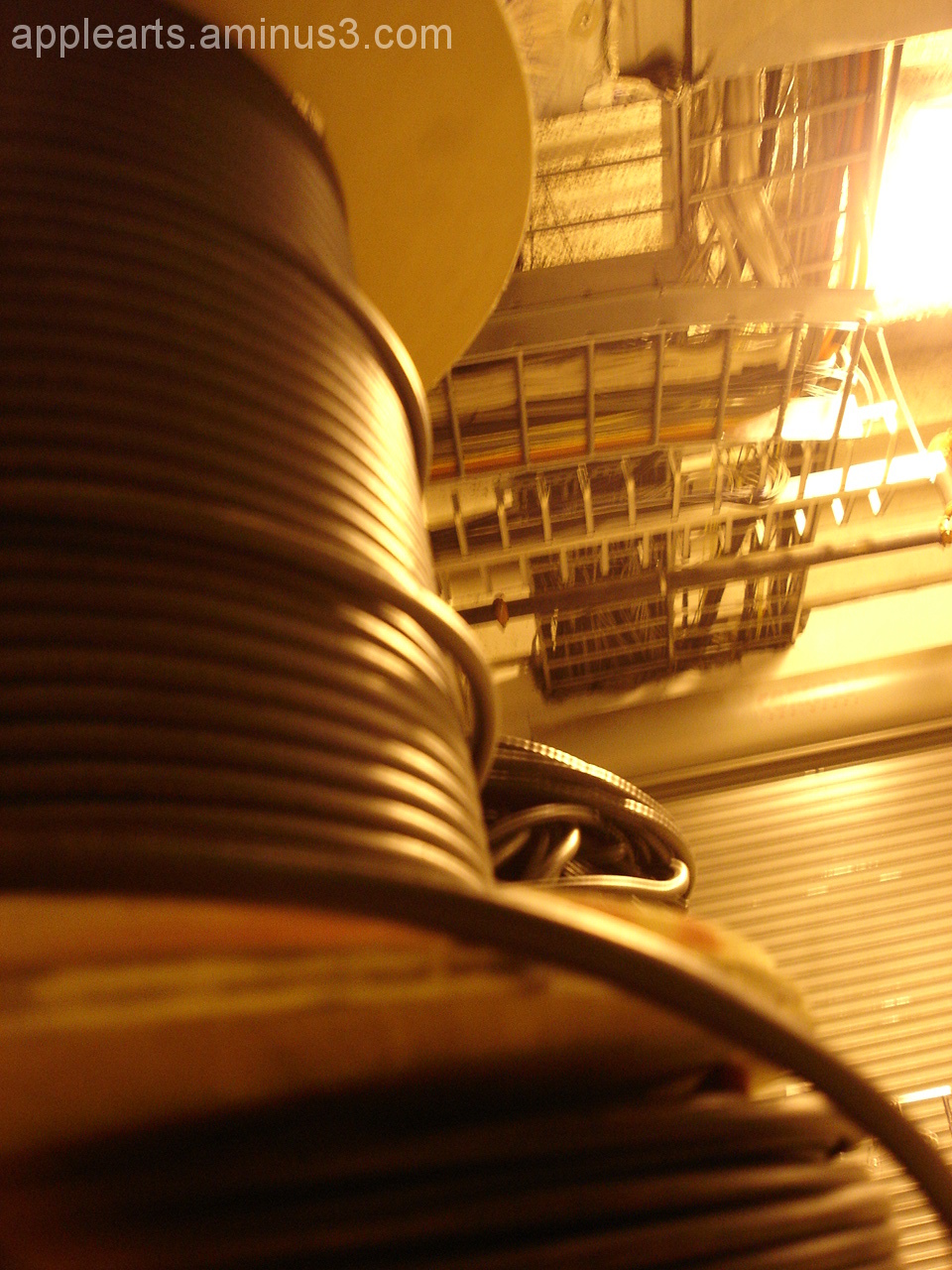 Illiminated Wire