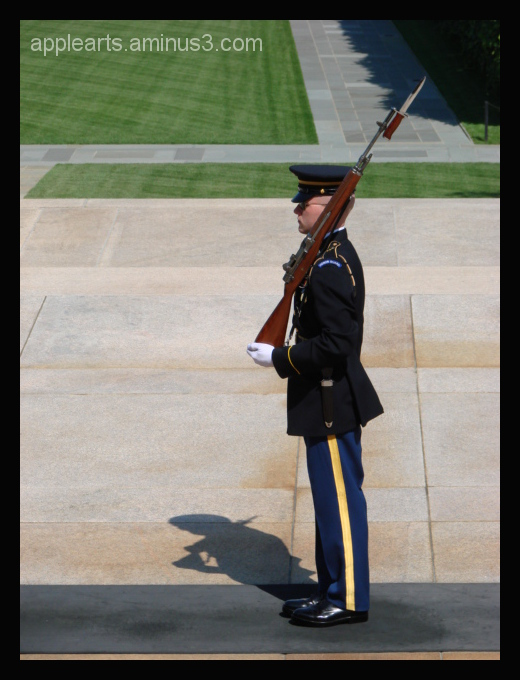 Tomb of the Unknown Soldier DC