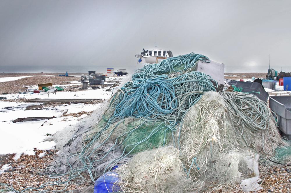sea*nets