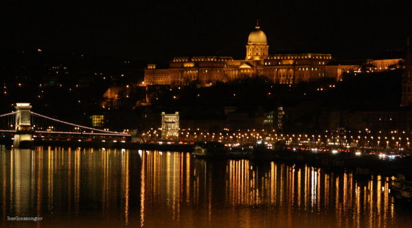 The Budapest castle at night.