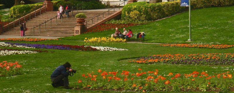 SF, Landmark Conservatory