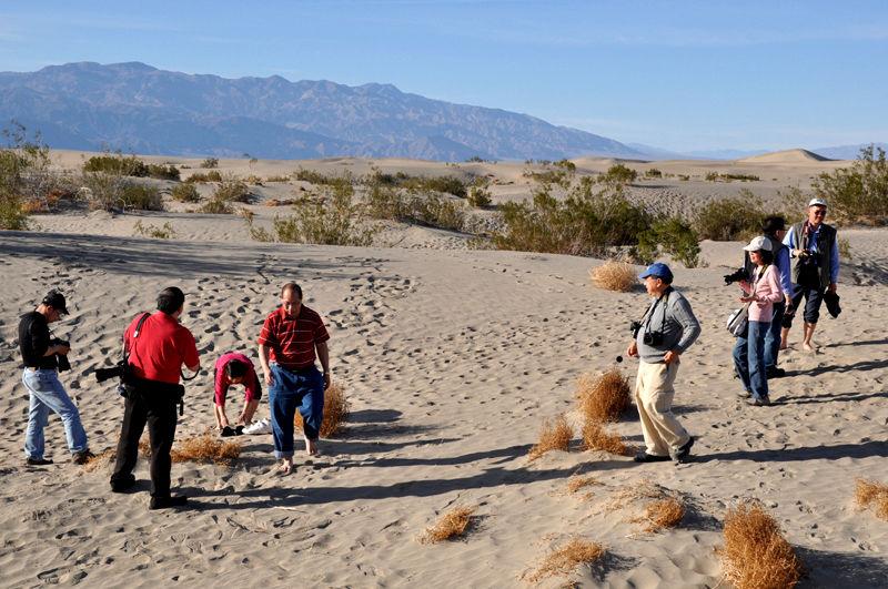 Scene at Sand Dunes