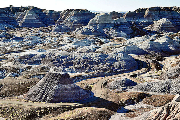 Landscape of Petrified Forest