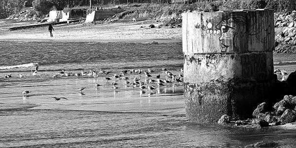 Beach at Pillar Point Harbor