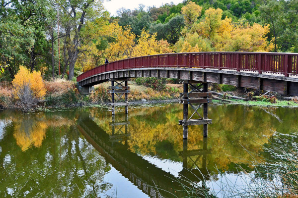 Clear Lake Park