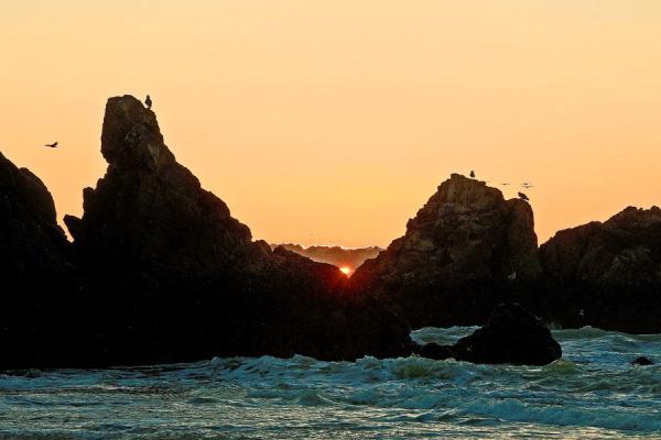 """Seals Rock  """" Sunset """" # 2"""