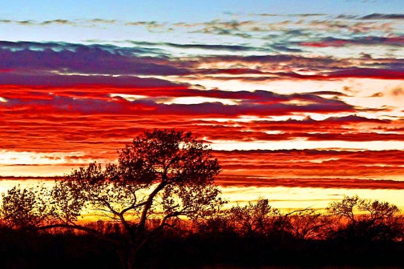 Sunrise at New Mexico of Albuquerque
