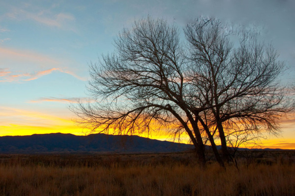 Dawn at Three Rivers of Albuquerque New Mexico