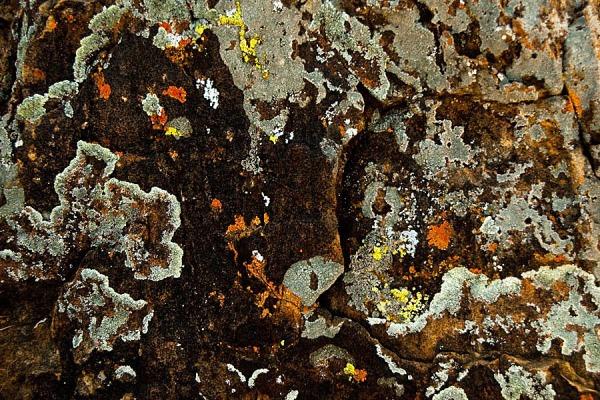 """ Textures "" Rock of Lava"
