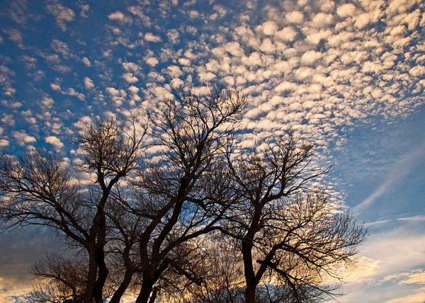 """"""" Dawn """" Sky Clouds"""