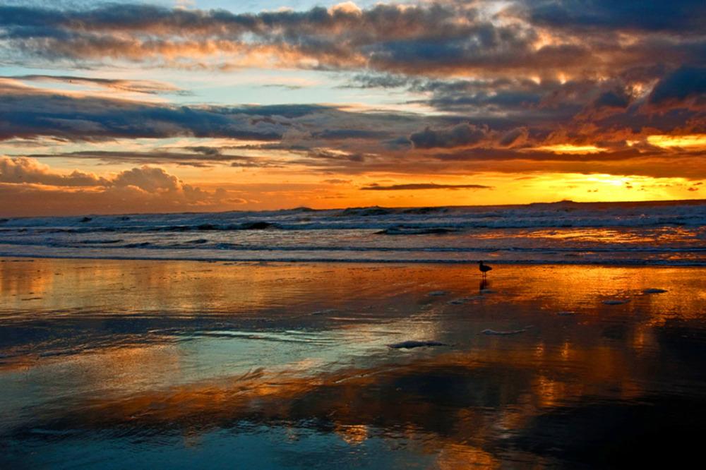 Ocean Beach Evening Scene