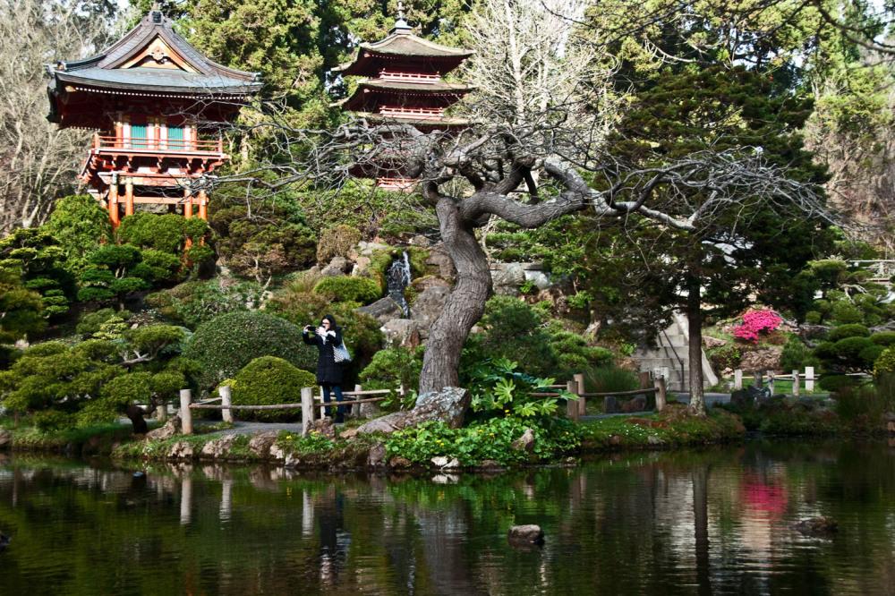 Japan Tea Garden