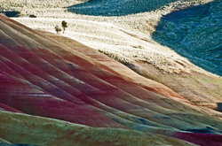 ' Sun reflected colors ' Painted Hills # 4