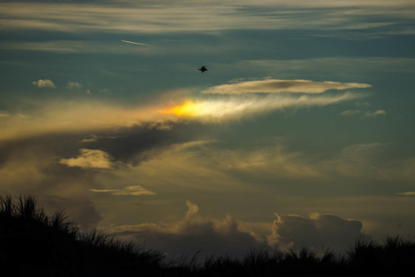 Rainbow in Spot