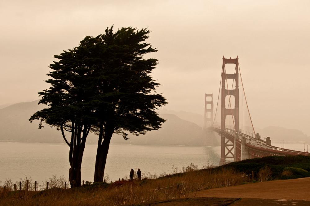 Mist Cover Landmark