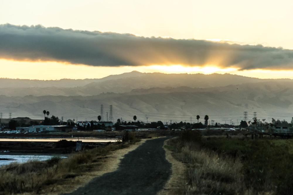 Morning scene, salt pond