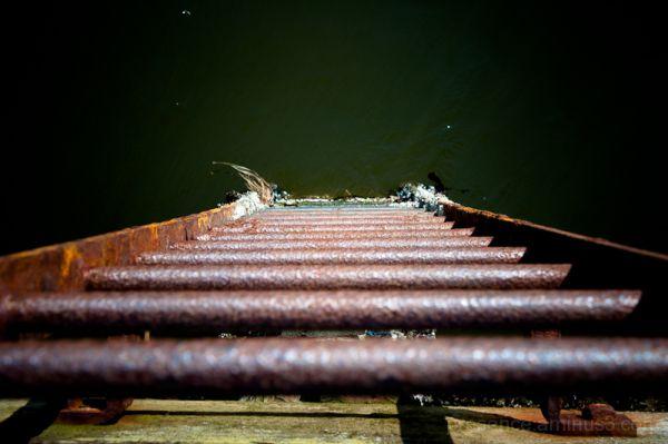 Ladder, Water