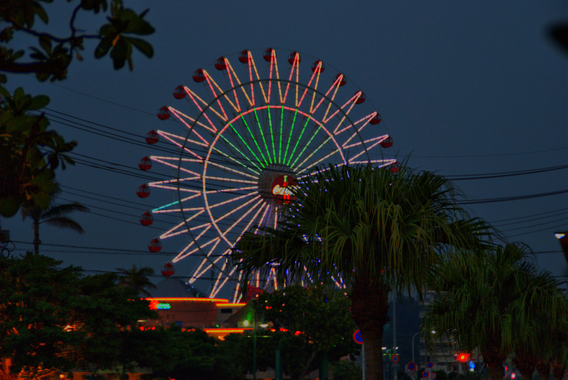 Ferris Wheel Night View
