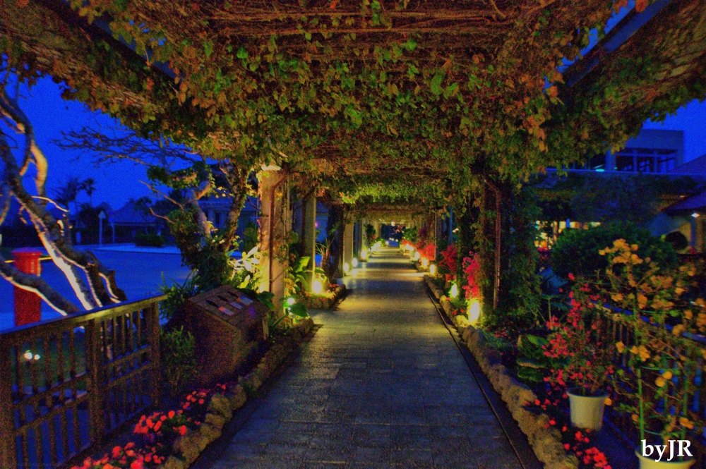 Covered walkway at night.