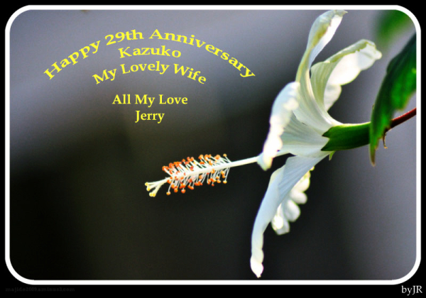 Happy Anniversary Honey.