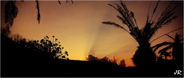 Early morning sun rays.
