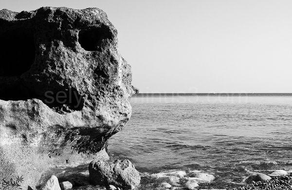 roca al  mar
