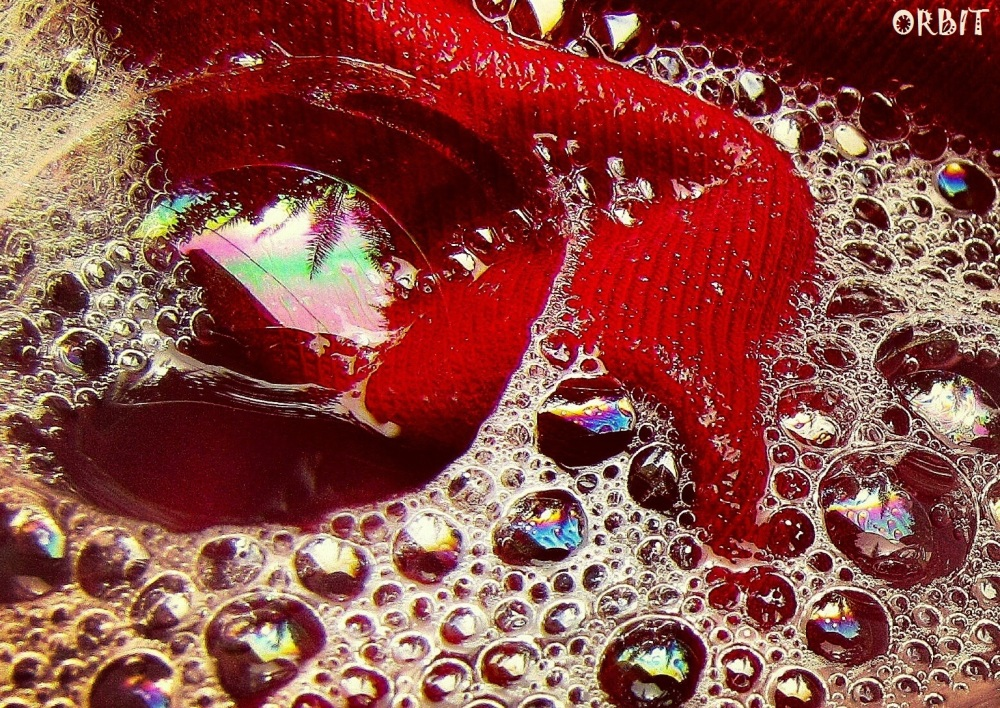 BUBBLE RED TREE
